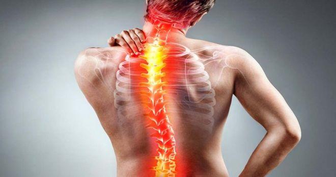 Позвоночник: что делать, чтобы избежать боли?